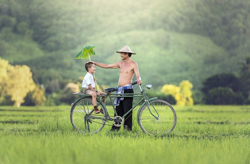 a little boy with his father on a bicycle